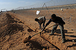 Eritrean labourers, working for an Israeli construction company, work on the construction of a barrier at Israel-Egypt border, some 70 km north of Eilat, southern Israel. Alarmed by what it described as a near-doubling in the influx of Africans seeking work or claiming refugee status, Israel last year began erecting a fence along the frontier.