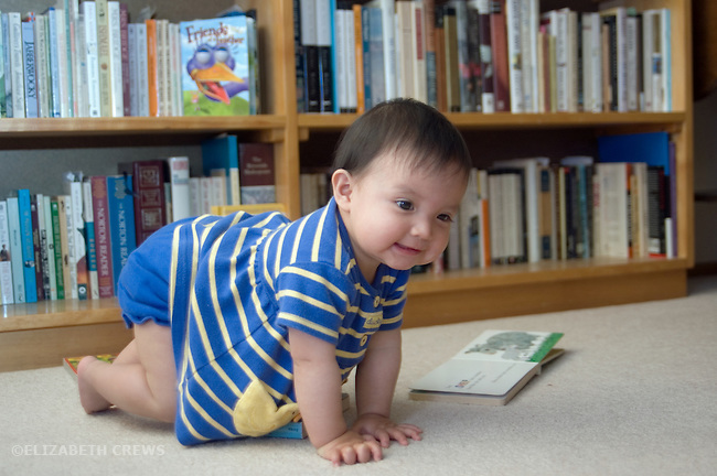Berkeley CA Baby girl, eleven-months-old practicing crawling at home  MR