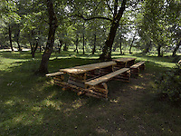FOREST_LOCATION_90078