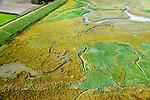 Nederland, Zeeland, Zeeuws-Vlaanderen, 19-10-2014; Het Zwin, oorspronkelijk zeearm, nu een strandgeul omgeven door schorren. Internationale Dijk en Willem-Leopoldpolder linksboven.<br /> The Zwin, originally estuary, now a beach gully surrounded by marshes.<br /> luchtfoto (toeslag op standard tarieven);<br /> aerial photo (additional fee required);<br /> copyright foto/photo Siebe Swart