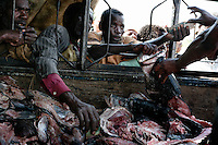 In villages between Lake Victoria and the Serengeti Ecosystem, truckloads of rotting fish carcasses are driven to the local markets and sold.  The filets are cut off in the processing plants in Musoma and then the Africans get to eat the bones...The filets are shipped to the EU...This is a cotton production area and these people have just sold their crops.  They have money to buy good food, but they don't have a market for it.