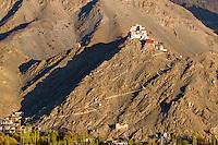 Namgya Tsemo Monastery or Namgya Tsemo  Gompa as seen from the Shanti Stupa. Leh, Jammu and Kashmir,  India