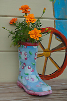 Rubber boot with marigolds next to sign in children's garden