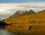 Bowman Lake in the fall in Glacier National Park