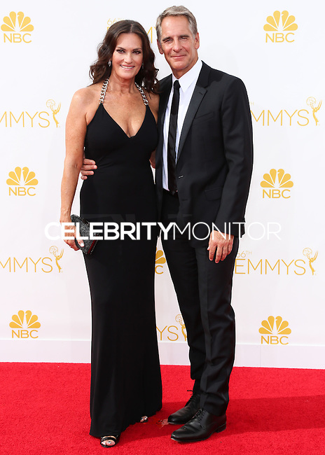 LOS ANGELES, CA, USA - AUGUST 25: Actor Scott Bakula and Chelsea Field arrive at the 66th Annual Primetime Emmy Awards held at Nokia Theatre L.A. Live on August 25, 2014 in Los Angeles, California, United States. (Photo by Celebrity Monitor)