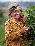 Cambodia 2005