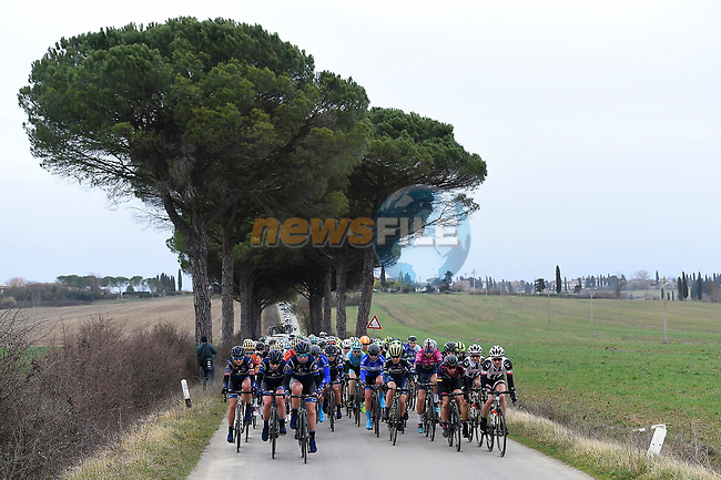 The peloton in action during the 2017 Strade Bianche Women Elite race running 127km from Siena to Siena, Tuscany, Italy 4th March 2017.<br /> Picture: LaPresse/Fabio Ferrari | Newsfile<br /> <br /> <br /> All photos usage must carry mandatory copyright credit (&copy; Newsfile | LaPresse/Fabio Ferrari)