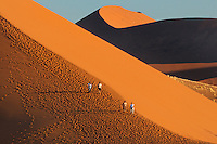 Hikers on sand dune, Namib-Naukluft National Park, Namibia
