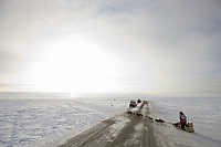Musher Mitch Seavey heads outside of Nome during the 2008 All Alaska Sweepstakes 100 year commemorative sled dog race.