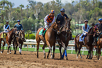 ARCADIA, CA APRIL 8: #5 Pretty Girl ridden by Victor Espinoza and #3 Prize Exhibit ridden by Mike Smith in the post parade of the Royal Heroine Stakes (Grade ll) on April 8, 2017 at Santa Anita Park in Arcadia, CA. (Photo by Casey Phillips/Eclipse Sportswire/Getty Images)