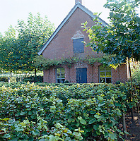 The old farm building has been sympathetically restored and is surrounded by rows of vines