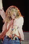 Led Zeppelin in Concert Circa 1970's