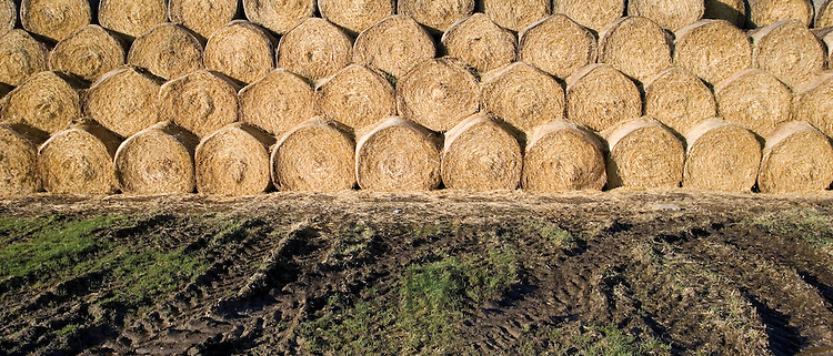 Stacked strawbales in muddy field, The Cotswolds, Oxfordshire, United Kingdom