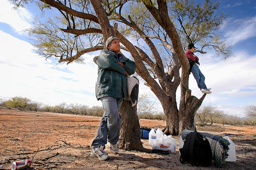 A couple of experienced border-crossers wait for night to fall, as one man climbs a tree to look for landmarks that will guide them to Tucson, Arizona. These two men have traveled this underground railroad several times in the past. This endless cycle continues as both members of the political fence continue to talk about the most cost-effective manner, both politically and economically, to solve this human exodus which claims hundreds of lives each year.       .Sonora-Mexico. 01/23/05.