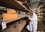 Portrait photograph of Jo Clarke, co-owner of the Leicestershire Handmade Cheese Company taken as she checks maturing Sparkenhoe cheeses - a rare genuine red Leicester cheese - in their storeroom in rural Leicestershire