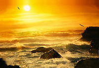 Oregon Coast at sunset with birds wheeling in waves and light on surf and rocks