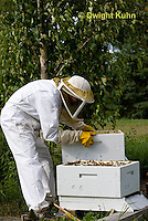 1B15-508z  Caring for Honeybee Hive