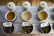 Different types of teas: First Flush, Bai-mu-Dan, Silver Tips Imperial, Oolong and Second Flush Muscatel, are laid out for tasting at the Makaibari Tea estate, in Darjeeling, India.