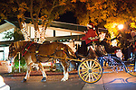 A horse-drawn carriage mskes its way down State Street.