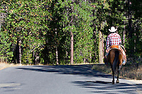 Western cowboy wearing red checked shirt and white cowboy hat, riding chestnut brown horse, riding alone along mountain road in the California Sierras