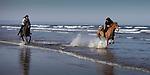 St Andrews horsey fun!