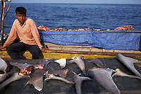 lv675. Fisherman drying shark fins, tropical Indian Ocean. Shark fin soup is popular in Asia. Worldwide shark populations are quickly being depleted. Many species are now endangered..Photo Copyright © Brandon Cole. All rights reserved worldwide.  www.brandoncole.com