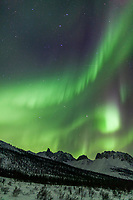 Aurora borealis over mount Snowden in the Brooks range mountains, arctic, Alaska.