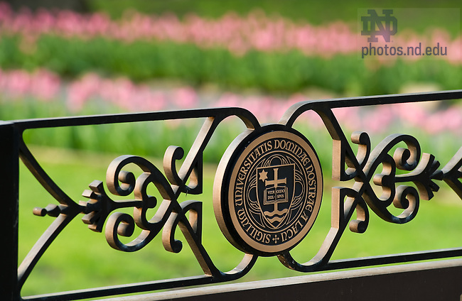 Mar. 25, 2012; University Seal at the Grotto..Photo by Matt Cashore/University of Notre Dame
