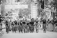 compact peloton with less then 1 km to go to the finish<br /> <br /> 103rd Li&egrave;ge-Bastogne-Li&egrave;ge 2017 (1.UWT)<br /> One Day Race: Li&egrave;ge &rsaquo; Ans (258km)