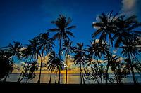 Palm trees silhouetted at sunset, Amuri Beach, Aitutaki Island, Cook Islands