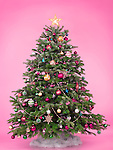 Decorated Christmas tree isolated on cute pink background