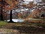 Central park lake in the autumn. Images of New York 2004, New York,U.S.A
