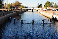 Scottsdale, Arizona (January 12, 2013) - As part of a seven-year plan to dry up all portions of its 131-mile canal system, Salt River Project (SRP), relocated the White Amur fish they used as an environmentally friendly and cost effective alternative to herbicides and heavy machinery for vegetation control. In this image, SRP workers stand inside the canal holding wire fencing to corral fish for transport to another section of the canal system. Fish are herded to be relocated to other portions of the canal. In this images, workers hold wire fence to block the fish to gather them in a collection area for transport to another section of the canal. Photo by Eduardo Barraza © 2013
