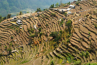 Much of the arable land in Nepal's Middle Hills has been cropped continuously since the 12th century, forcing farmers to cut a living from steeper and more fragile slopes. Throughout the hills there are abandoned terraces exhausted of the mineral nutrients necessary for continued farming.