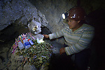 Marisol Baltazar inspects at statue of &quot;El Tio&quot;  inside a mine in Potosi, Bolivia. El Tio (the Uncle) is considered by most miners here to be lord of the underworld. Miners bring offerings such as cigarettes, coca leaves, and alcohol for the statues, believing that if El Tio is not fed, he will take matters into his own hands. Above ground, most miners are Christians.<br /> <br /> Nineteen-year old Baltazar, a university student, lives near the entrance of the mine, high on the infamous Cerro Rico. A member of the local Methodist Church, Baltazar earns extra income by taking visitors inside the mine, where women seldom work as miners.