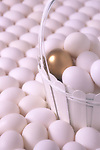 White eggs in a white basket on a field of white eggs with one golden egg.