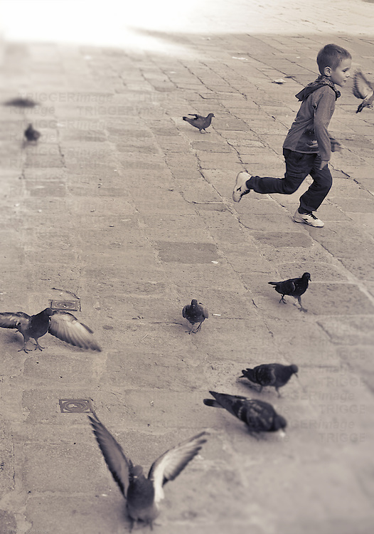 A child plays on a campo in Venice, running and chasing pigeons.