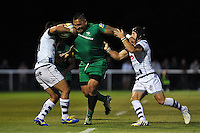 London Irish v Bristol