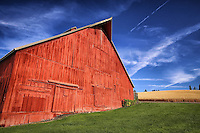 Palouse Primary Colors - WA