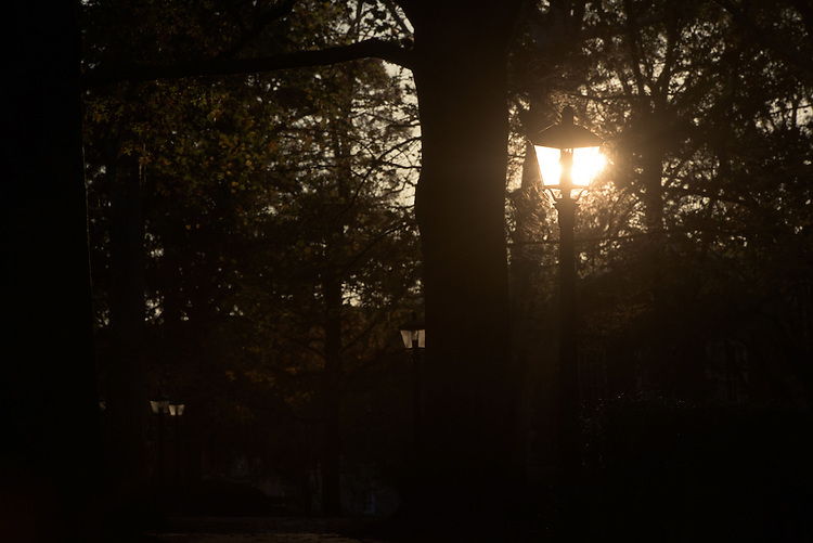 The last moments of sunlight shine through a light pole on College Green on November 12, 2016.
