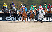 Colonial Cup Races - 11/17/12