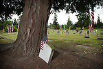 The headstone of WWI veteran Guy Sindars, who died in 1938, is dwarfed by the tree that has grown up next to it in 75 years. Memorial Day, Sequim WA