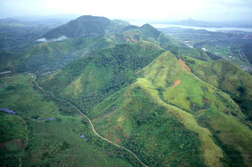 empowering reforestation in the philippines Full-text paper (pdf): reforestation and producer organizations in the philippines.