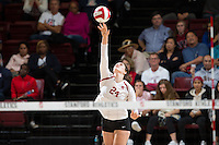 STANFORD, CA - October 14, 2016: Audriana Fitzmorris at Maples Pavilion. The Arizona Wildcats defeated the Cardinal 3-1.