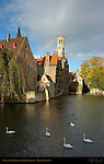 Mute Swans on the Djiver at the Rozenhoedkaai, Red Hat Quay, Wollestraat Hotels and Belfort Bell Tower, Bruges, Brugge, Belgium