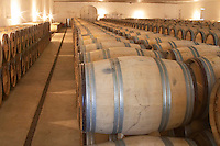 Oak barrel aging and fermentation cellar. Chateau Guiraud, Sauternes, Bordeaux, France