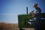 A farmer inspecting his corn crop with his vintage John Deere tractor