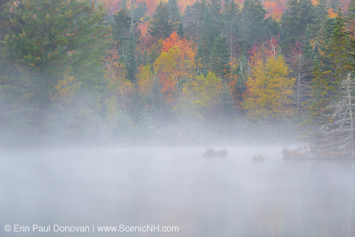 Autumn foliage at Wildlife Pond in Bethlehem, New Hampshire during the autumn months.