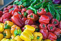 Red, Yellow, Green, Bell Peppers