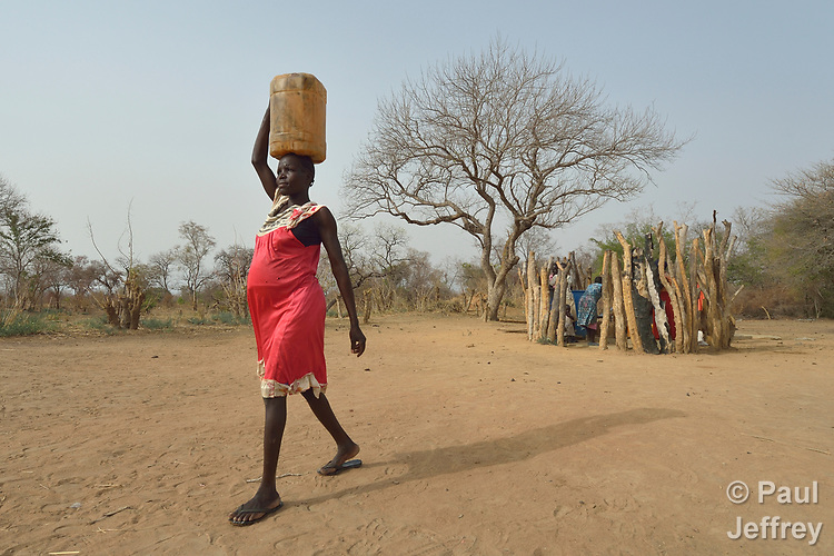 Mary Kuol carries water home from a well dug by the ACT Alliance in Yang Kuel, a village in South Sudan's Lol State where a persistent drought has destroyed crops and forced people to eat wild leaves to survive. Kuol is seven months pregnant.<br /> <br /> The well was drilled in 2016 by a local partner of Christian Aid, a member of the ACT Alliance. The organization has also distributed food vouchers to hungry families in the region.